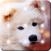 Puppy Cute Little Dog Nice Screen Lcok icon