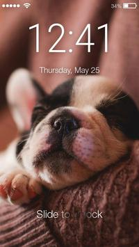 Puppy Cute Little Dog Nice Screen Lcok poster