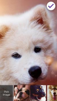 Puppy Cute Little Dog Nice Screen Lcok screenshot 2