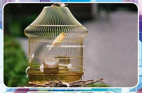 Bird Cage Design apk screenshot