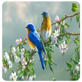 Bird HD Wallpaper icon