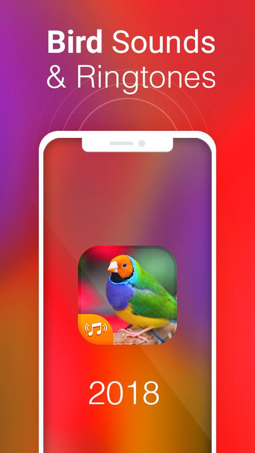 Bird Sounds & Bird Ringtones for Free 2018 for Android - APK
