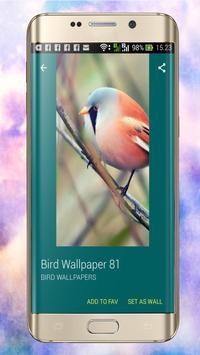 Bird wallpaper apk screenshot
