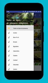 Canto de Tico-Tico Rei dos Passaros screenshot 2