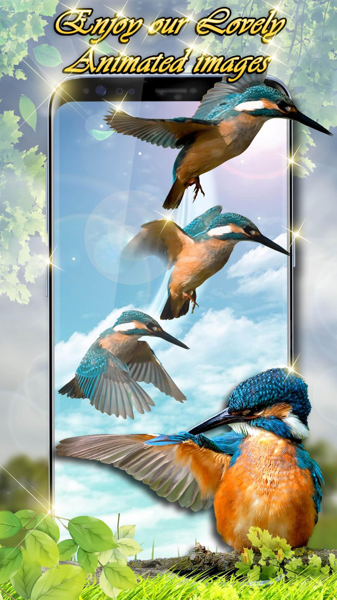Wallpaper Suara Burung Hidup 🐦 Gambar Animasi For Android