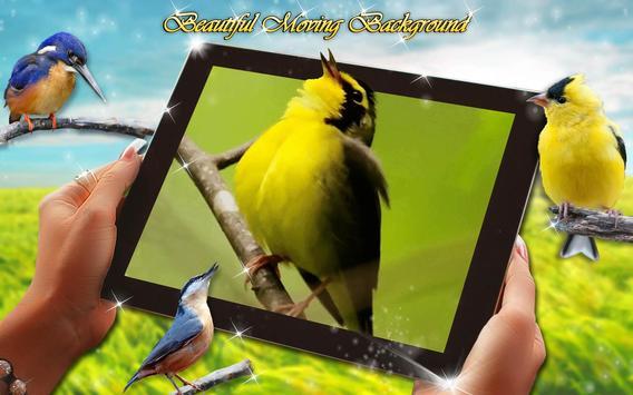 Wallpaper Suara Burung Hidup Gambar Animasi For Android Apk