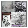 Art Drawings