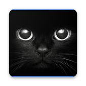 Black Wallpaper 4k icon