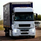 Truck Simulator : BigCity icon