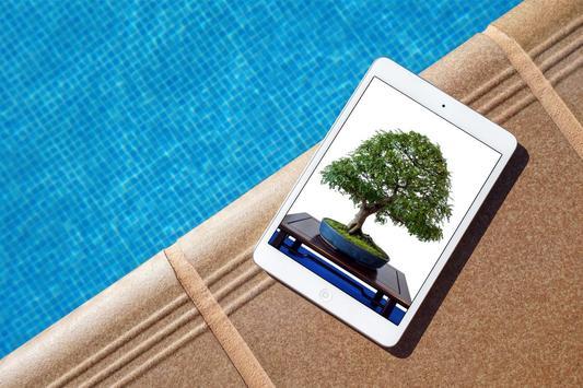 Bonsai Tree Design Ekran Görüntüsü 5