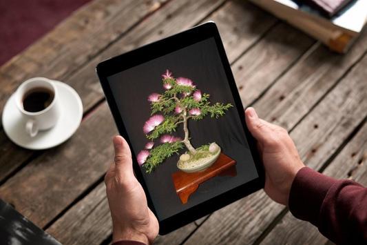 Bonsai Tree Design Ekran Görüntüsü 6