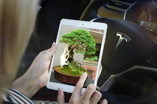Bonsai Tree Design Ekran Görüntüsü 7