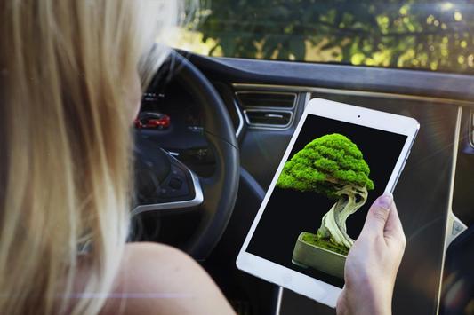 Bonsai Tree Design Ekran Görüntüsü 8