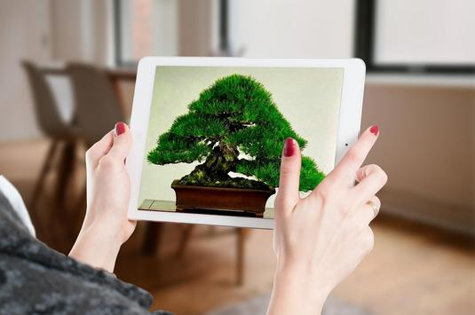 Bonsai Tree Design Ekran Görüntüsü 9
