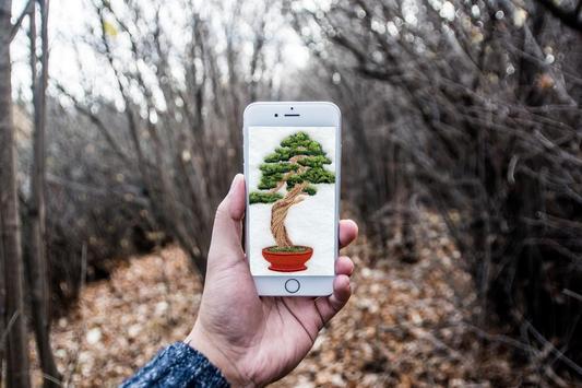 Bonsai Tree Design poster