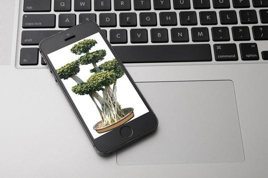 Bonsai Tree Design Ekran Görüntüsü 2