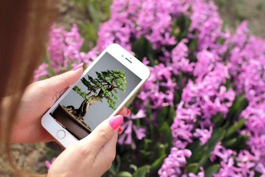 Bonsai Tree Design Ekran Görüntüsü 3