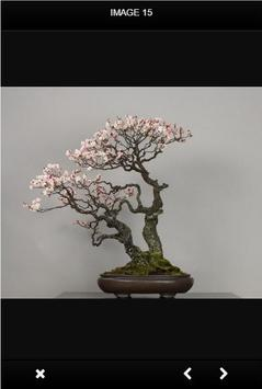 Bonsai Tree screenshot 2