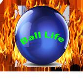 Ball Life icon