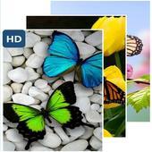 Cute Butterflies Wallpaper icon