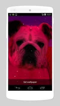 cute dog live wallpapers screenshot 2