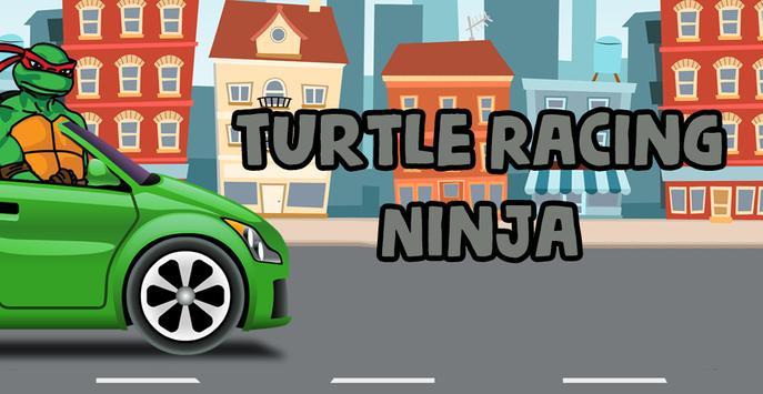 Turtle Racing Ninja poster