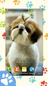 Dog Wallpapers apk screenshot