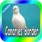 Best Canaries Roller icon