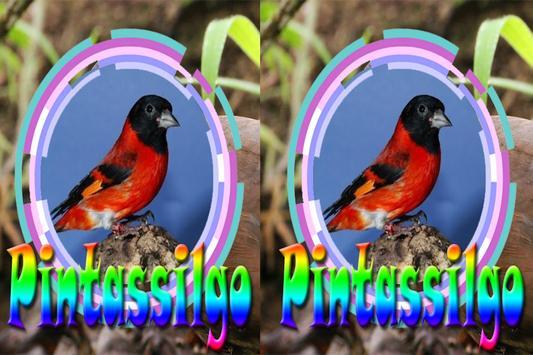 Cantos Da Pintasilggo Complete screenshot 4