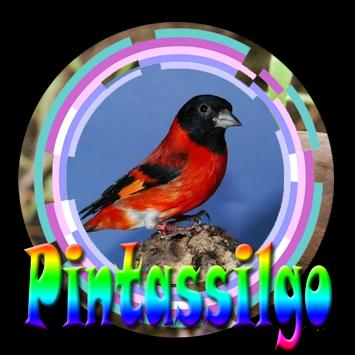 Cantos Da Pintasilggo Complete poster