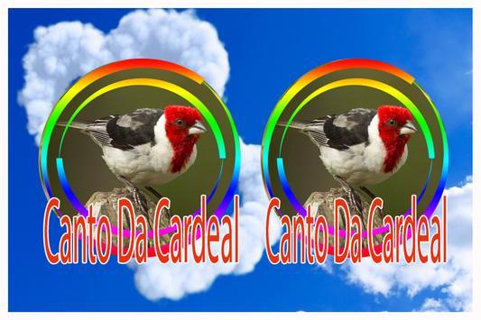 CANTO DO CARDEAL-DO-NORDESTE apk screenshot