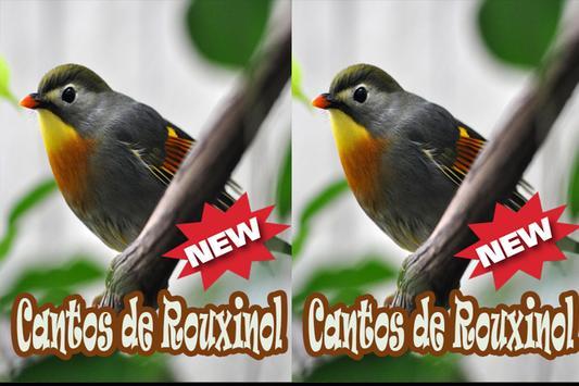 Cantos De Rouxinol Amazone Brasilo Mp3 apk screenshot