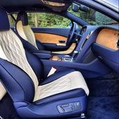 Car Interior Design icon
