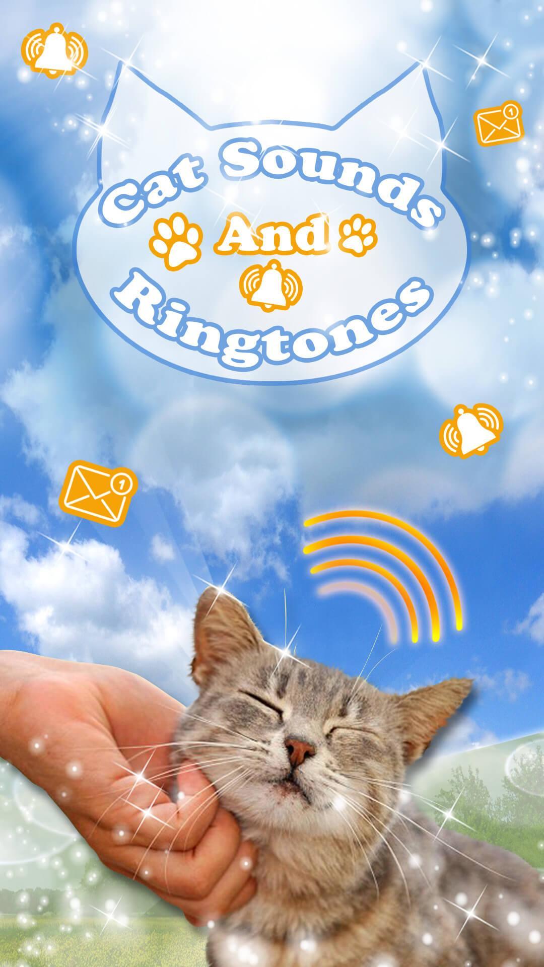 Klingelton Katze