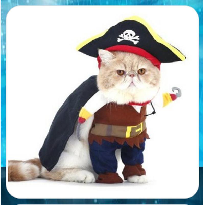 Katzen Kleidung für Android - APK herunterladen