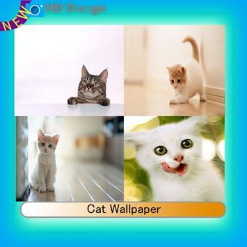 Cat Wallpaper poster