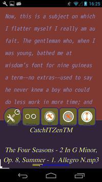 CatchIT Spaces Zen-TM screenshot 2
