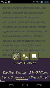 CatchIT Spaces Zen-TM screenshot 3