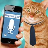 Cat to Human Translator Prank icon
