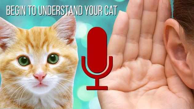Cat to Human Translator Prank poster