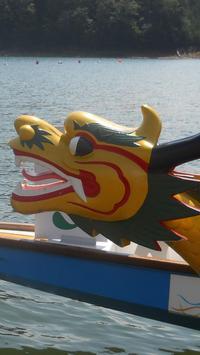 Dragon Boat festival Wallpaper screenshot 2