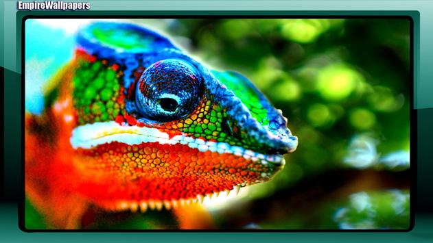 Chameleon Wallpaper apk screenshot