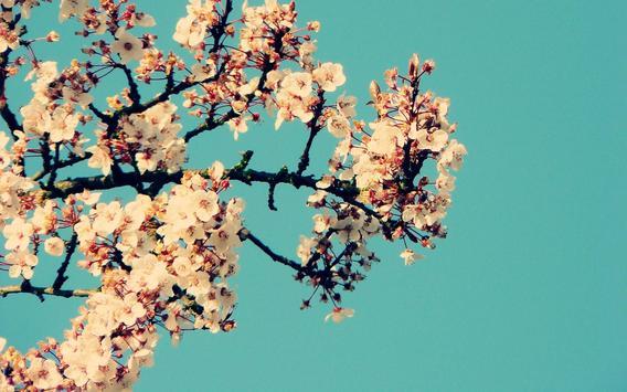 Magnolia Live Wallpaper apk screenshot