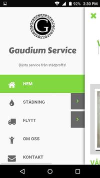 Gaudium poster