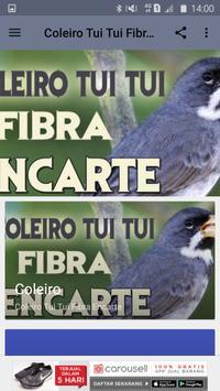 Coleiro Tui Tui Fibra Encarte poster