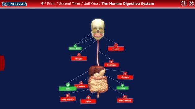 El-Moasser Digestive System 3D screenshot 1