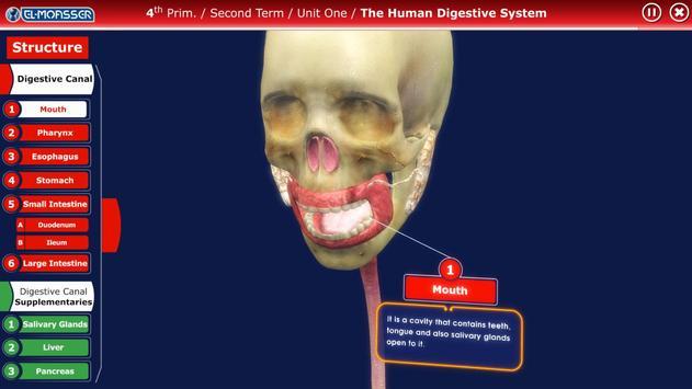El-Moasser Digestive System 3D screenshot 2