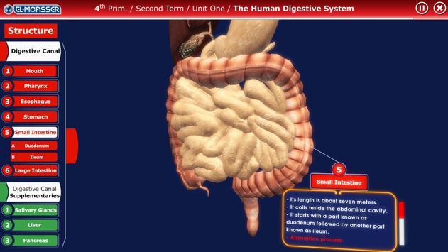 El-Moasser Digestive System 3D screenshot 3
