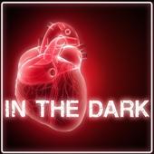 In The Dark icon