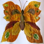 Craft Dried Leaves icône